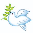 Sweetforest EdU R & C (HK) Ltd logo