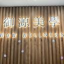 wowwellness logo
