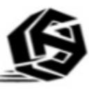 N4S logo