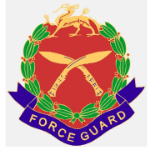 Force Guard Limited logo
