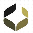 A Plus Wealth Management logo