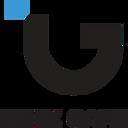 index game limited logo