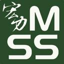 Megastrength Security Services Co. Ltd logo