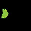 Holistic beaute logo