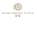 Golden Diamond Traffle Ltd logo