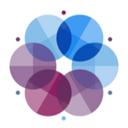 Osmium Consulting Group logo