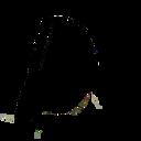 Pop Up Dance logo
