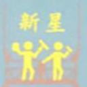 新星工程(香港)有限公司 logo